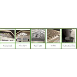 Abri résine grosse épaisseur 22 mm toit bi-pente 8,06 m2